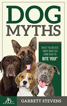 DOG MYTHS: What you Believe about dogs can come back to BITE  