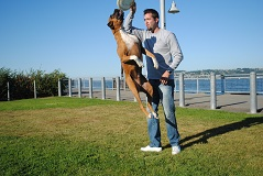 Dog Trainer, Tacoma, WA